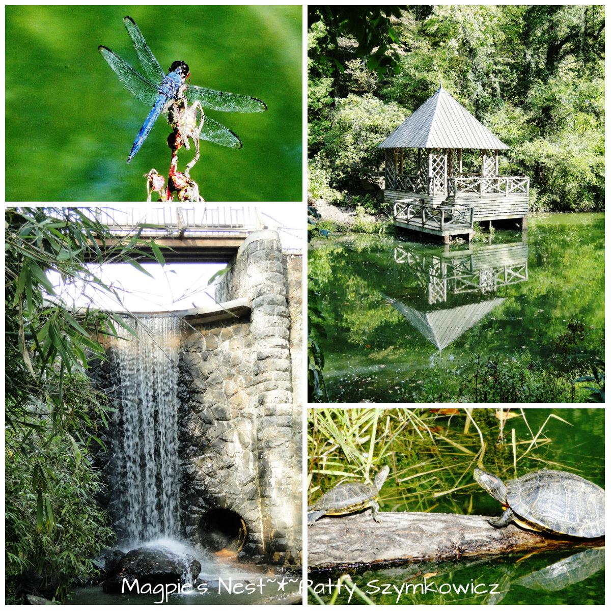 Magpie's Nest ~*~ Patty Szymkowicz