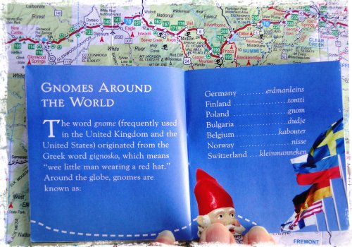 Sandy's Gnome Passport