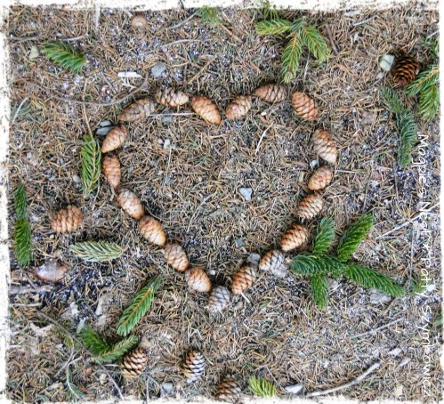 Pinecone Heart for Alex