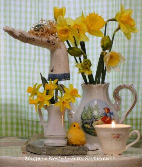 first daffodils