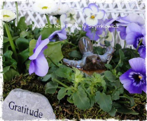 Magpie's Nest Omi's bday (3)