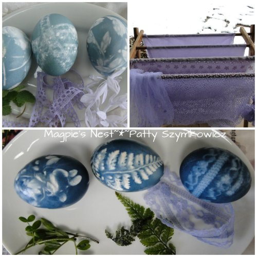 Red Cabbage Eggs and Fabric