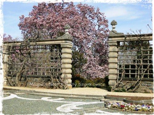 Dumbarton Pebble Garden