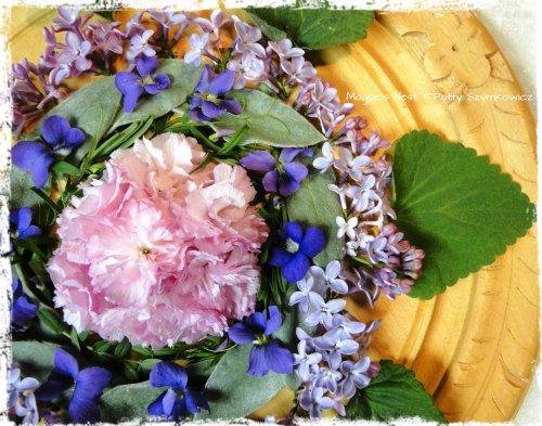 Kwanzan Cherry Violet Lilac Mandala (3)
