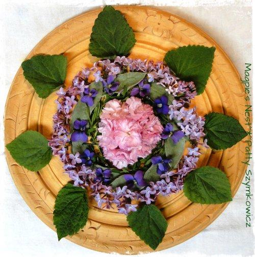 Kwanzan Cherry Violet Mandala (4)
