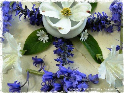 Blue and White May Mandala (2)