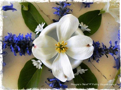 Blue and White May Mandala (3)