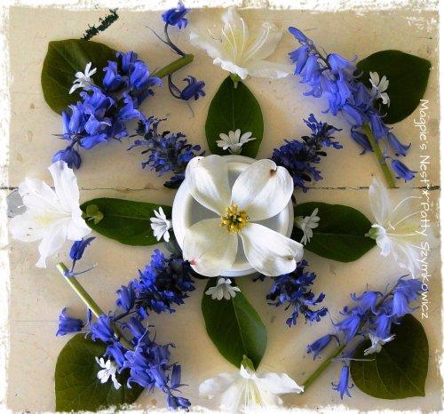 Blue and White May Mandala (5)