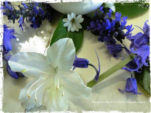 Blue and White May Mandala