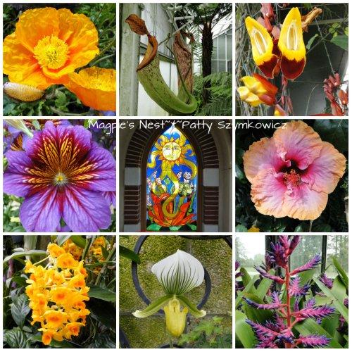 Longwood Bloom Sampler