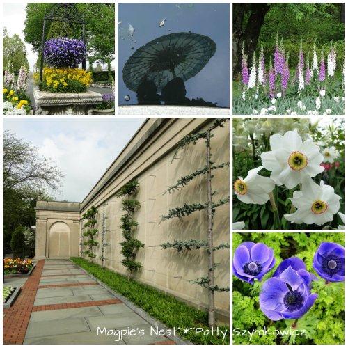 Longwood Gardens Parasol Reflection