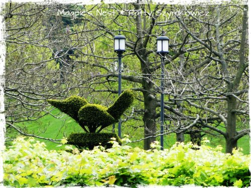 Longwood Gardens Topiary