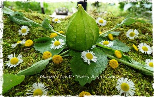 Daisy Green Mandala (1)