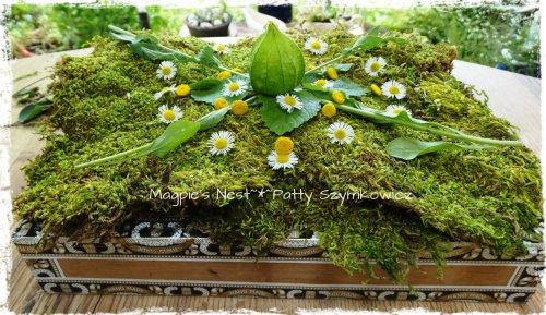 Daisy Green Mandala