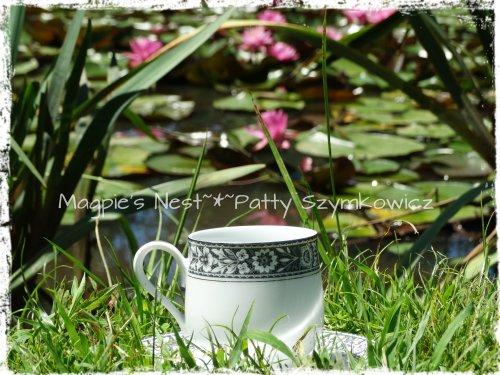 June Traveling Tcup Waterlilies