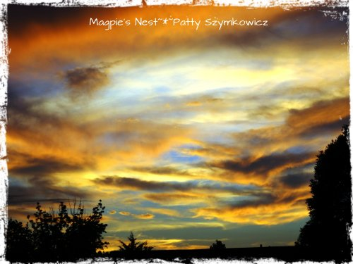 Patty Szymkowicz Nature's Majesty VA Sunset