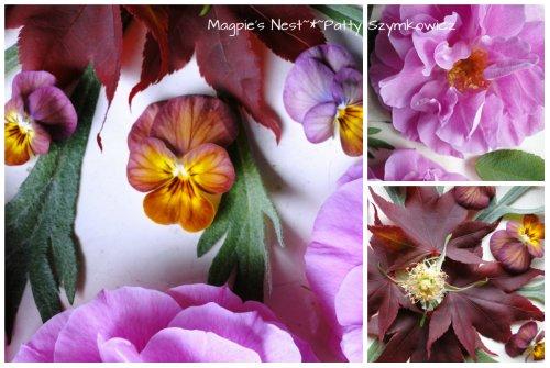 Patty Szymkowicz Rose Bloodgood Maple Mandala (1)