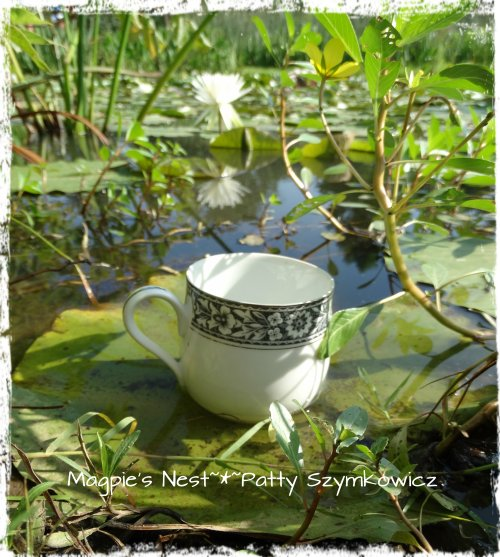 Water Lily Traveling Tea Cup