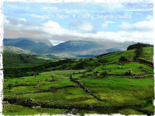 #13 Kenmare Ireland stone fences