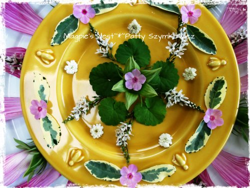 Hibiscus Mandala (1)