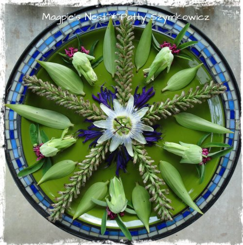 Liatris Passion Flower Mandala (2)