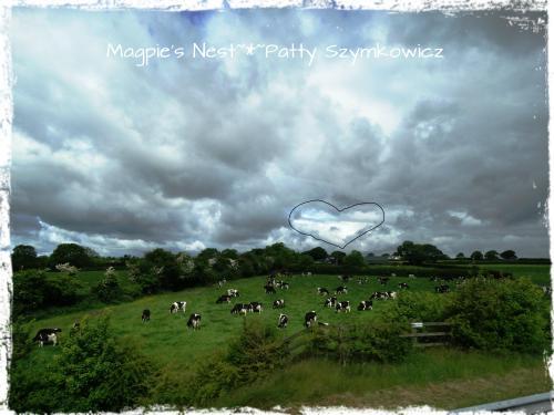 #12 Scotland Heart Cloud (1)