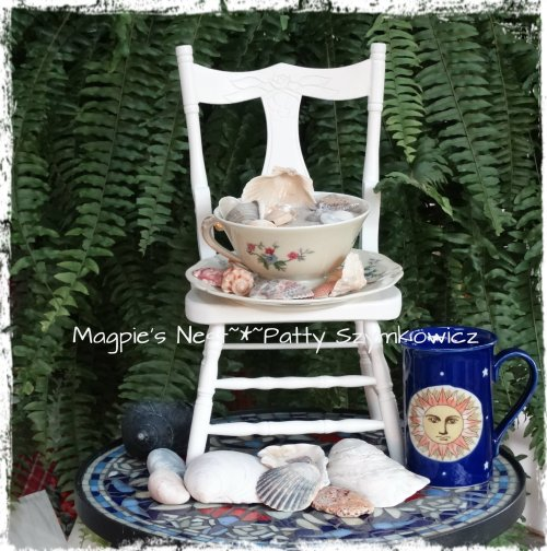 Limoges Shell T (1)