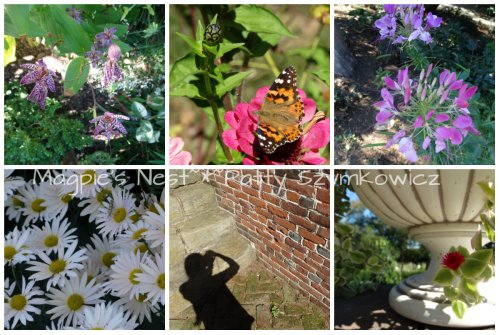Oatlands Blooms and Shadow