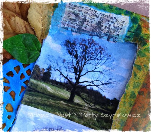 Tree Photography pages (2)