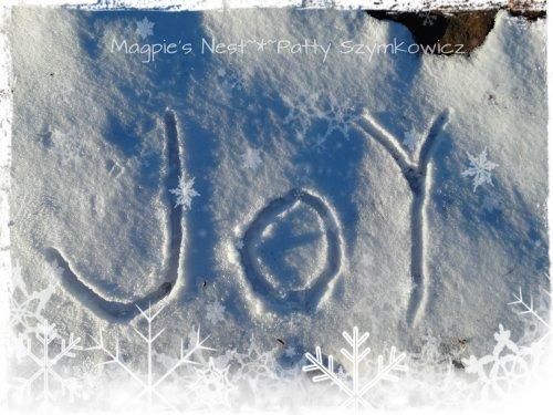 JOY snow