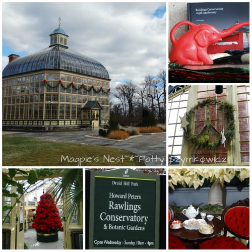 Rawlings Conservatory Baltimore MD