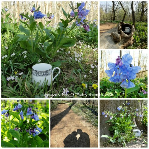 Bluebell Traveling Tea Cup