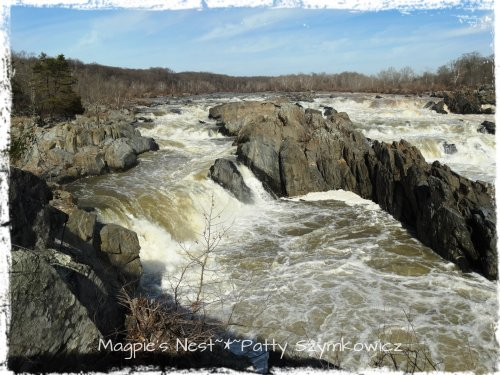Great Falls Potomac River VA