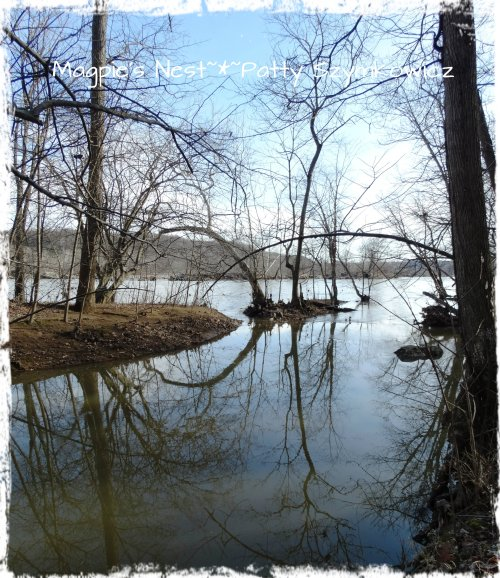 Potomac River edge