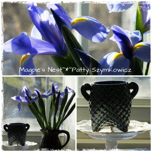 three legged cup and Siberian Irises