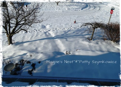 February 2014 snow