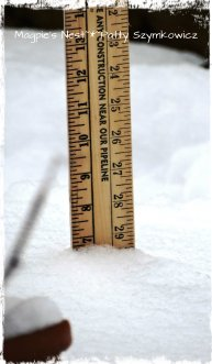 almost 7 inches