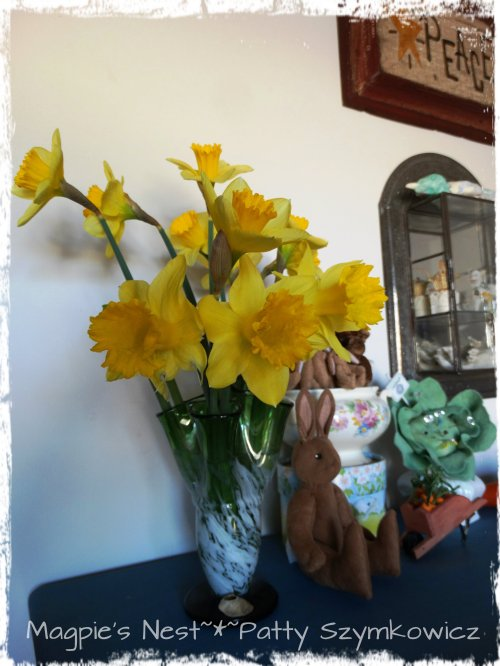 Daffs coaxed into blooming with Omis bunnies