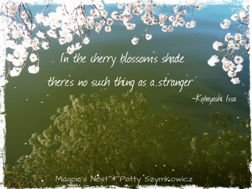 Cherry Blossom Shade Quote