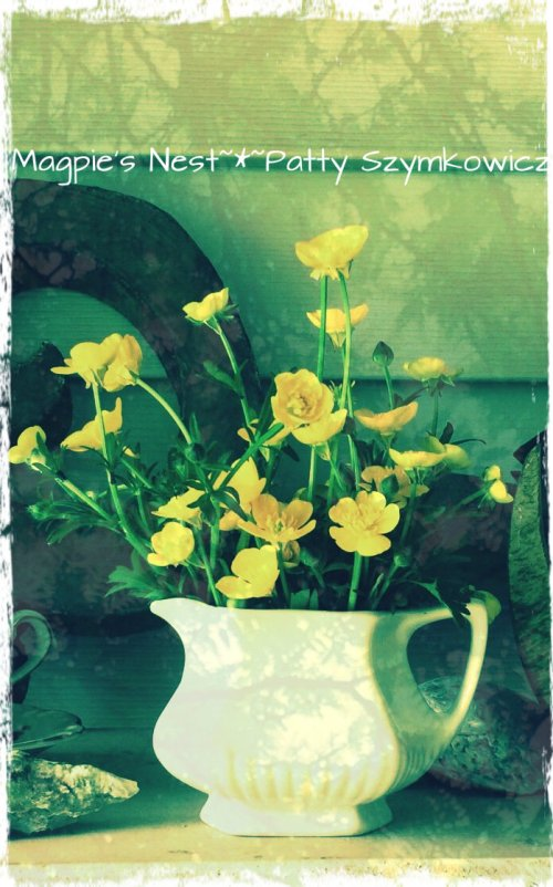 buttercups iphone and pixlr filters