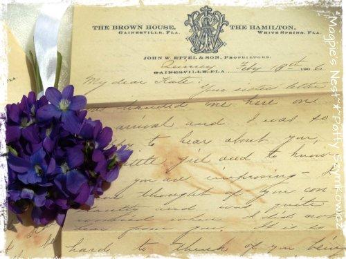 Feb 1906 pressed violets