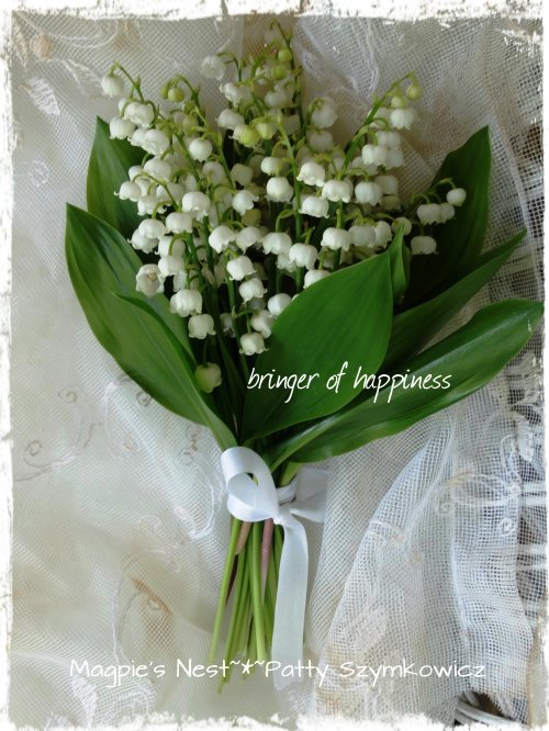 Lily of the Valley Bringer Of Happiness
