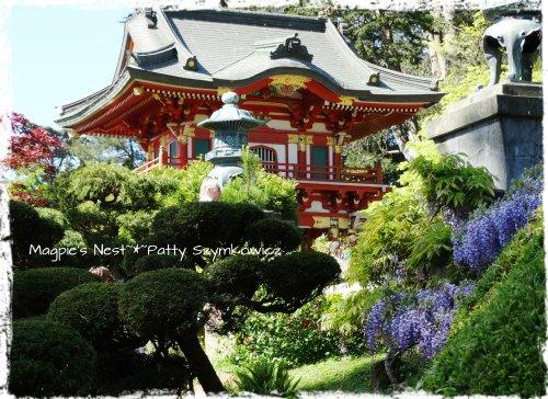 Pagoda Wisteria