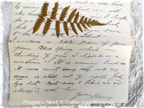 Pressed Fern July 1906 (1)