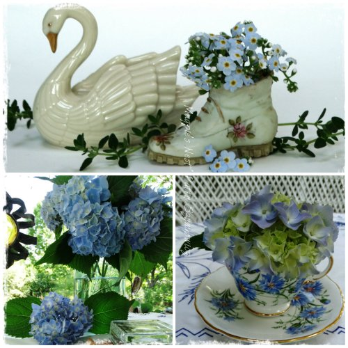 Forget-me-Nots and Hydrangeas