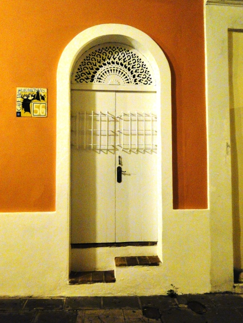Patty Szymkowicz Doors of Old San Juan PR (16)