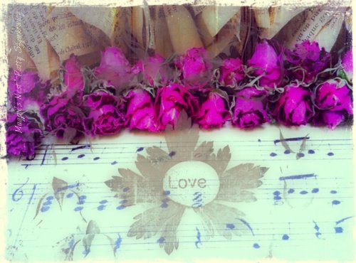 Rose Paper Garland with phone apps