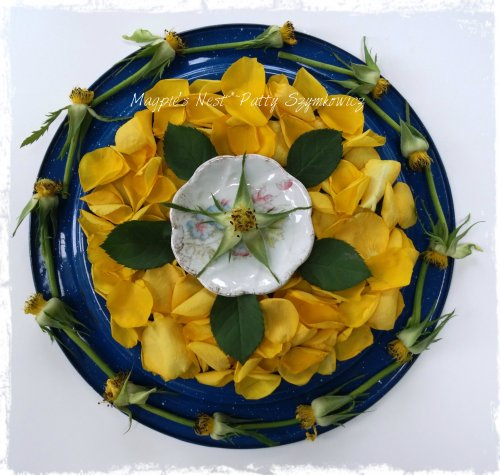 Yellow Rose Mandala