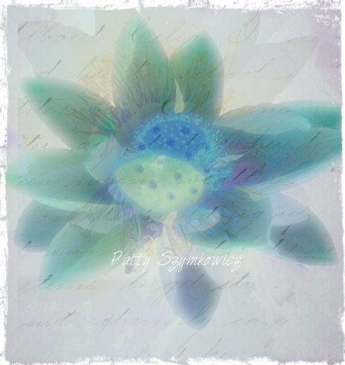 inverted lotus