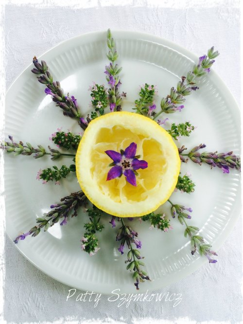 Magpie's Nest Lemon Lavender Borage and Thyme Mandala